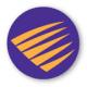 Palisade Systems PacketSure Logo